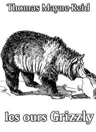 Illustration: Les Ours Grizzly - Thomas Mayne reid