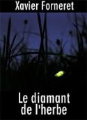 Xavier Forneret: Le diamant de l'herbe