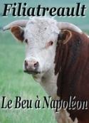 Aristide Filiatreault: Le Beu à Napoléon
