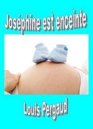 Louis Pergaud - Joséphine est enceinte