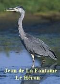 jean de la fontaine: Le Héron