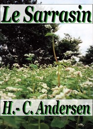Illustration: Le Sarrasin - Hans Christian Andersen