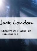 Jack London: Chapitre 24 (l'appel de son espèce)