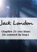 Jack London: Chapitre 25 croc blanc (le sommeil du loup)