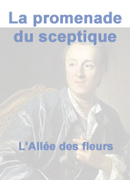 Illustration: La Promenade Du Sceptique-partie4 - Denis Diderot