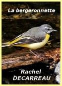 Rachel Decarreau: La bergeronnette