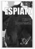 Thierry Demercastel: Espiatz