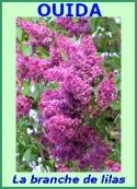 Ouida: La branche de lilas