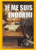 Thierry Demercastel: Je me suis endormi