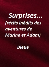Illustration: Surprises 10 - Bleue