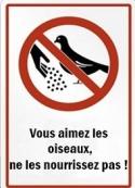 Ahikar: Nasreddine – Vous aimez les oiseaux, ne les nourrissez pas !
