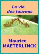 Maurice Maeterlinck: La vie des fourmis