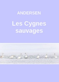 Illustration: Les Cygnes sauvages (Version 2) - Hans Christian Andersen