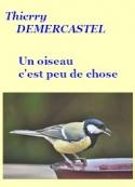 Thierry Demercastel: Un oiseau c'est peu de chose