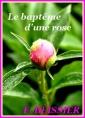 Le baptême d'une rose