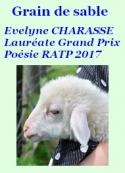 Evelyne Charasse: Grain de sable
