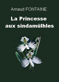 Arnaud Fontaine - La Princesse aux Sindamülhes