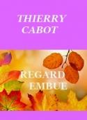Thierry Cabot: Regard embué