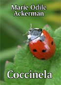 Marie Odile Ackerman: Coccinela