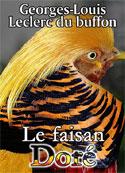Leclerc de Buffon: Le Faisan doré ou le Tricolor huppé de la Chine