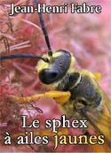 Jean-Henri Fabre: Le sphex à ailes jaunes
