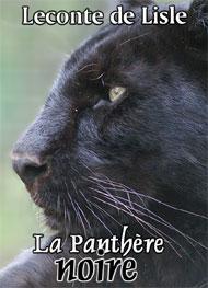 Leconte de Lisle - La Panthère noire