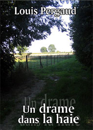 Illustration: Un drame dans la haie - Louis Pergaud