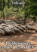 Voltaire: Réflexions pour les sots